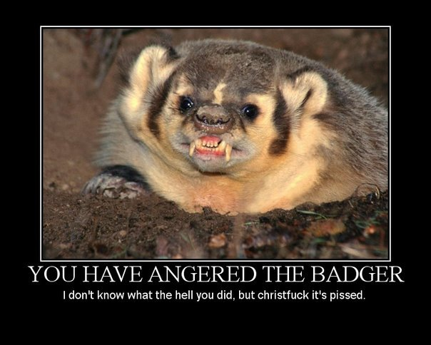 Demotivation poster: snarling badger subtitled - You have angered the badger. I don't know what the hell you did, but christfuck it's pissed.